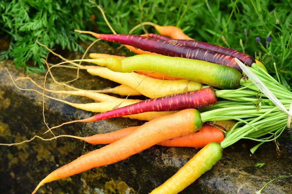Carrot Top Pesto Thinkstock