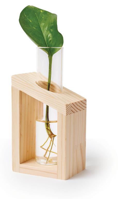 Everdaymeadows Vase