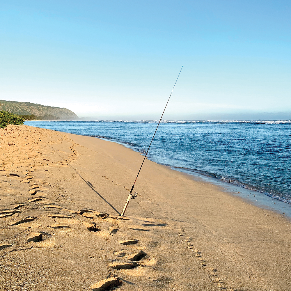 The Best Events And Things To Do On Oahu This Summer Fishing In Hawaii