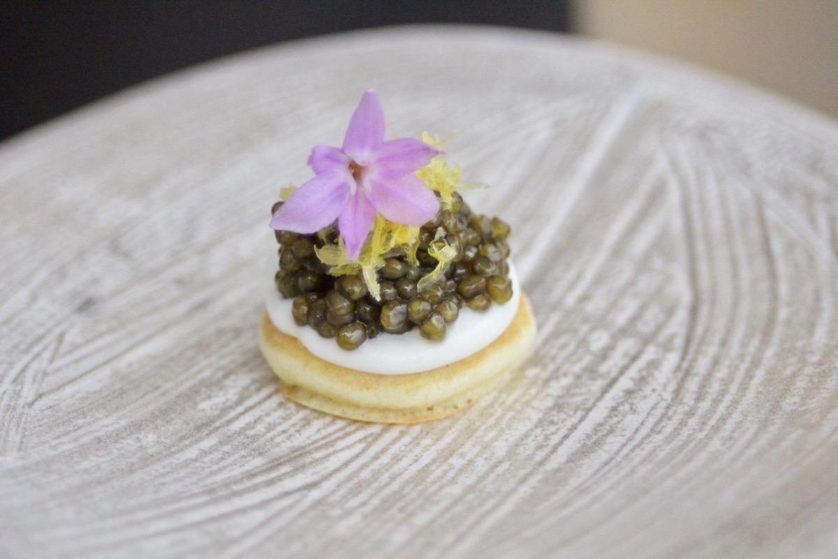 Caviar Mochi Blini Mugen Espacio Wp