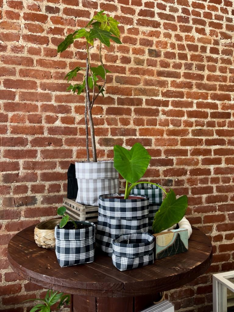 Poai Plant Sack Credit Thomas Obungen
