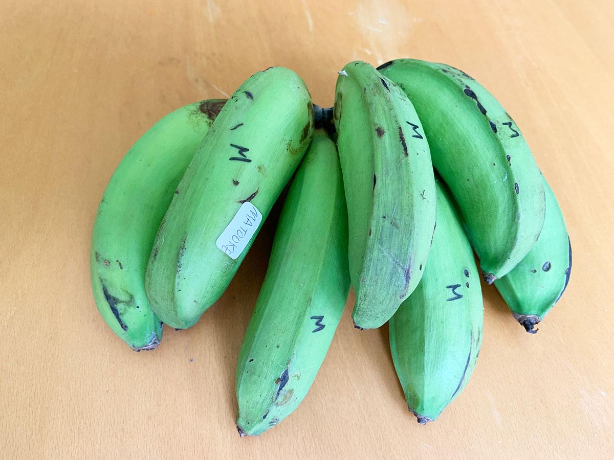 Banana Source Box Matooke Photo Christi Young
