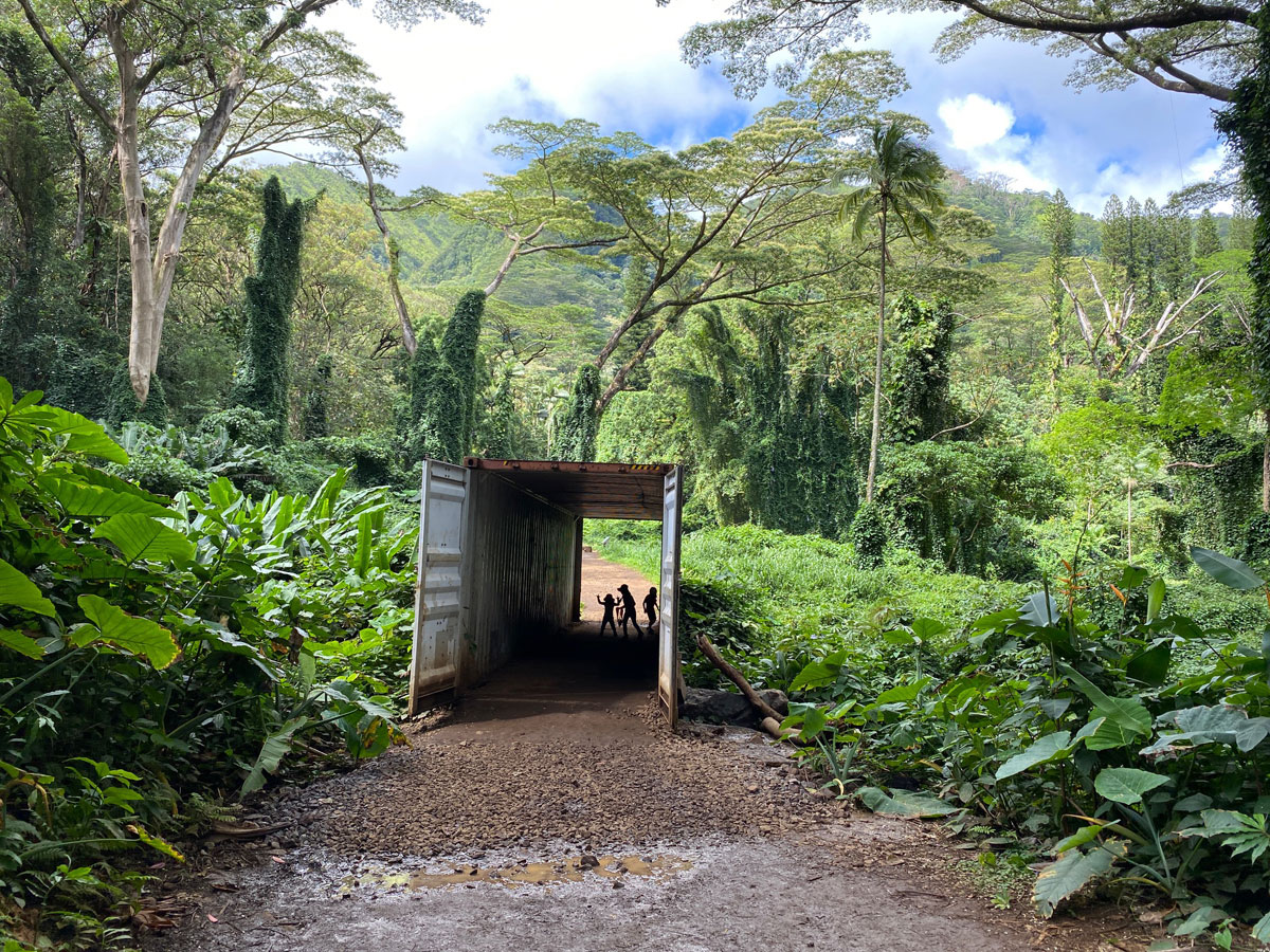 Manoa Falls Trail Shipping Container Photo Laura Dornbush