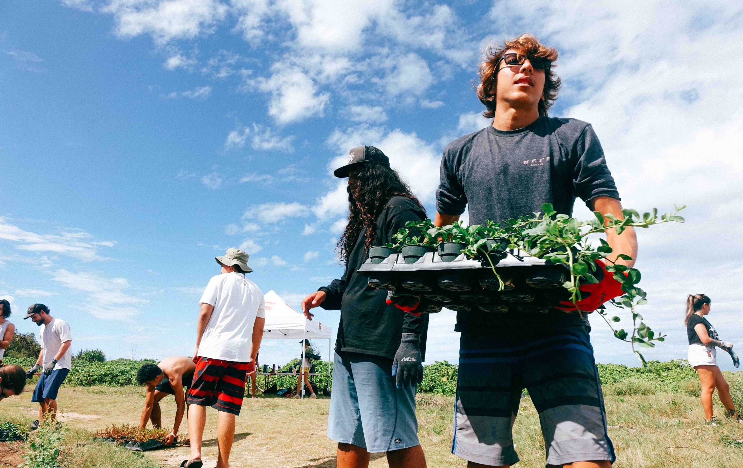 Things To Do July 7 Kahuku Point Volunteer Photo Coutresy Of Anna Velykodna
