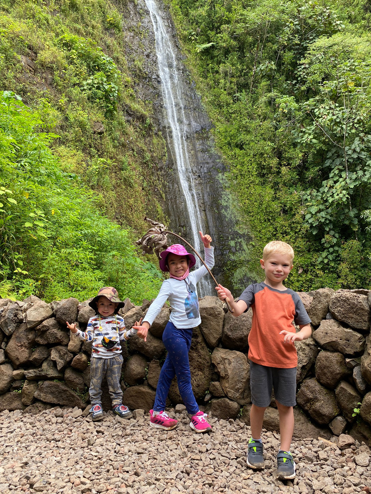 Manoa Falls Trail Wall Photo Laura Dornbush