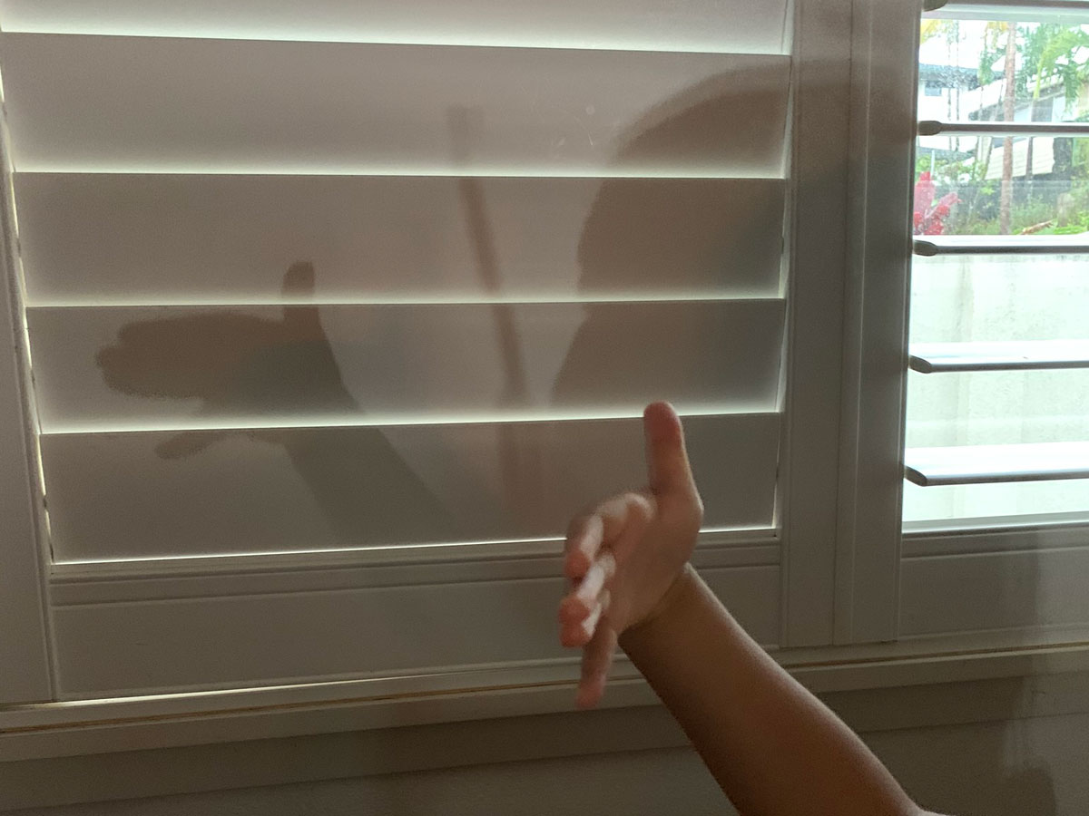 Hurricane Party Shadow Puppet Photo Christi Young