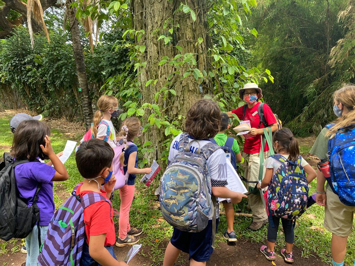 After School Programs Edventure Photo Hawaii Nature Center