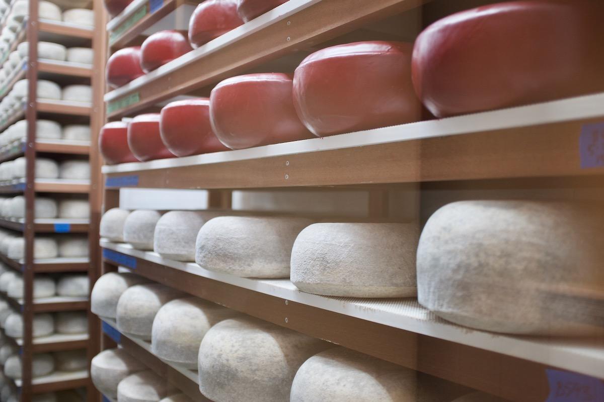 Sweet Land Farm Cheese Credit Martha Cheng