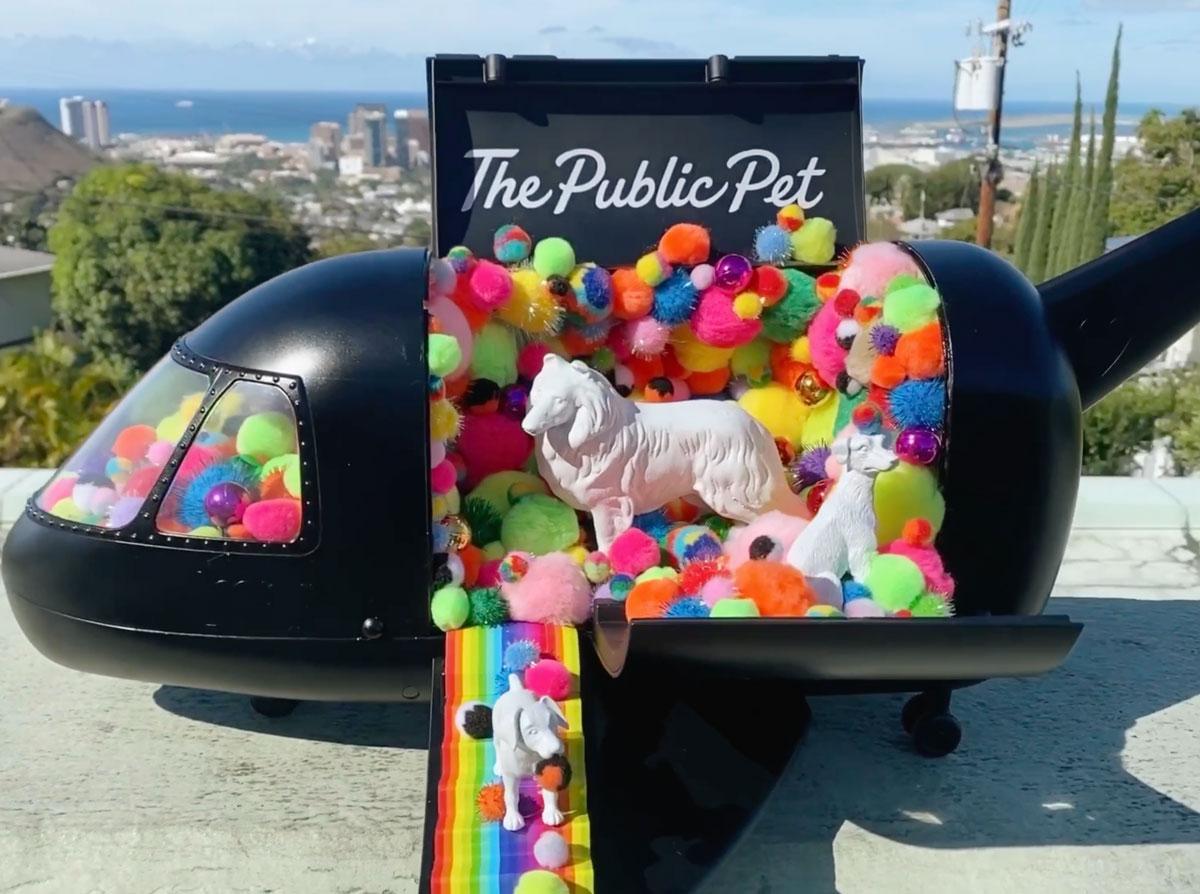 Tiny Float Parade The Public Pet Photo Hawaii Lgbt Legacy Foundation